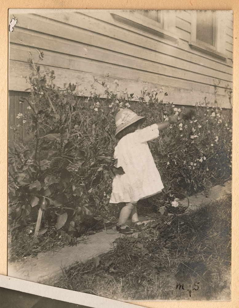 A little girl in the garden